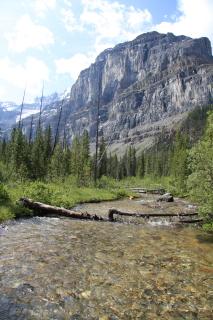 湖底堆積物の採集調査