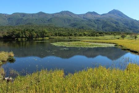 複合的な環境変動が生物多様性と機能性を脅かす